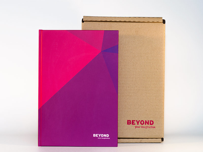 Beyond_bb_800x600